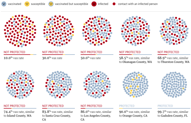 Vaccination rate and measles outbreak simulation